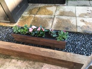 2 planters, same plants, different colours
