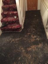Hallway carpet up